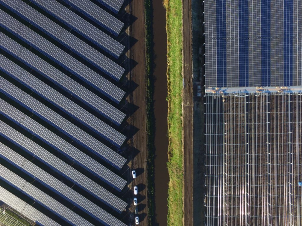 Koning opent zonnepark in Nieuw Buinen